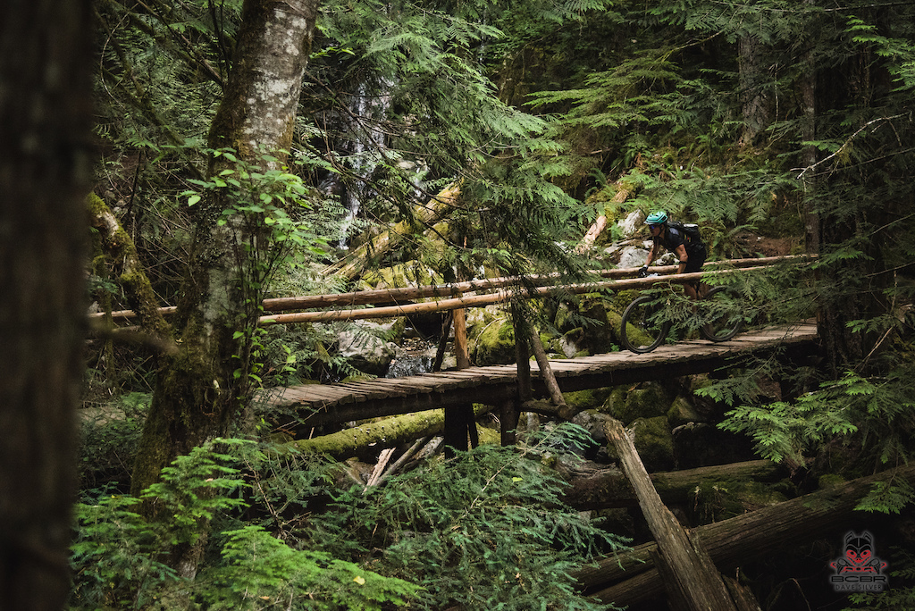 Waterfalls wooden bridges ferns moss... What s your Squamish trail photo recipe loook like