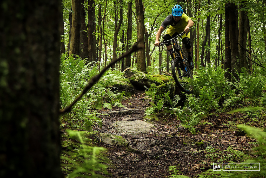Trailforks Trail of the Month Gene s Trail with the Flow Killa option.