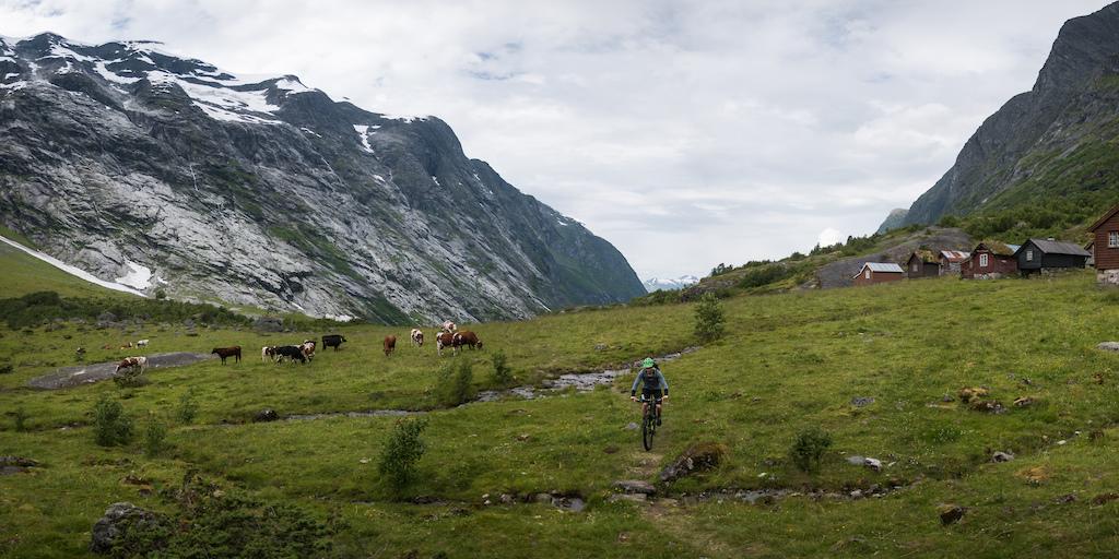 Riding in Erdal, Sogn og Fjordane, Norway
