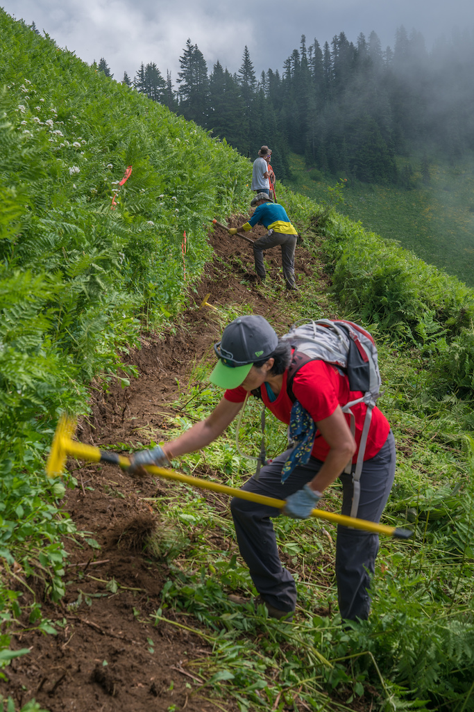 Evergreen Trail Crew High Above the Skykomish Valley