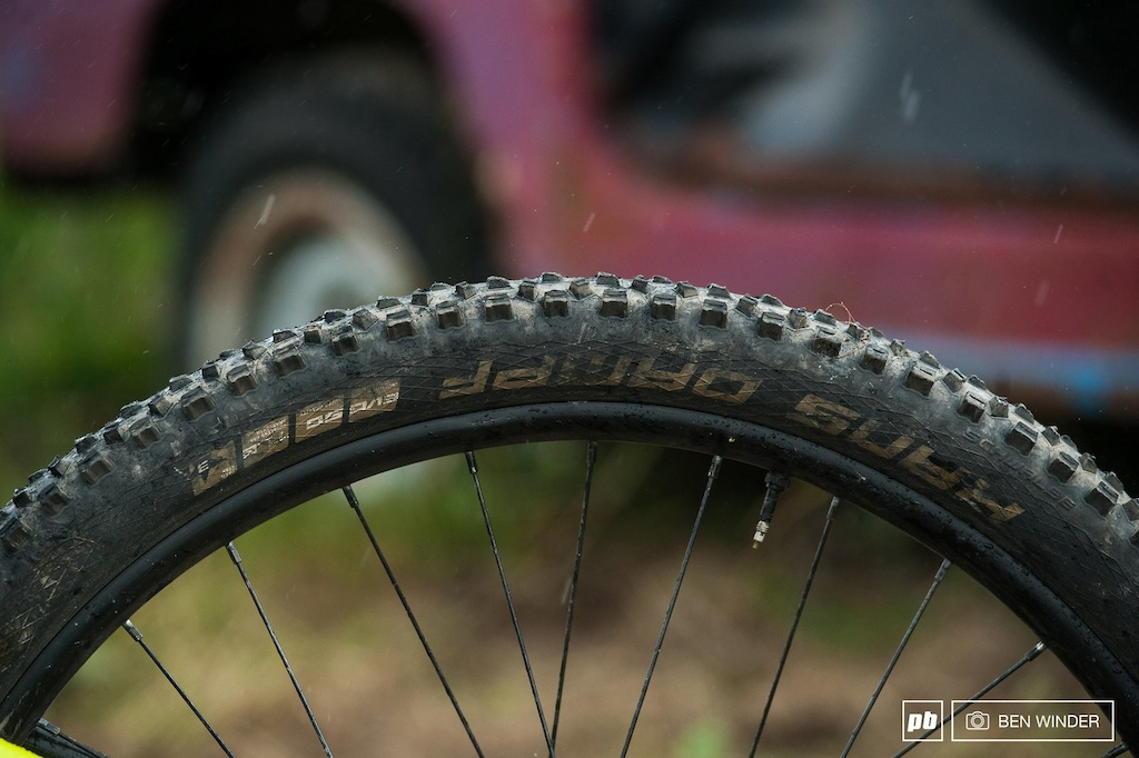 It s rare to find a eMTB with a solid pair of shoes. The Super Gravity Schwalbe tires are a great choice.
