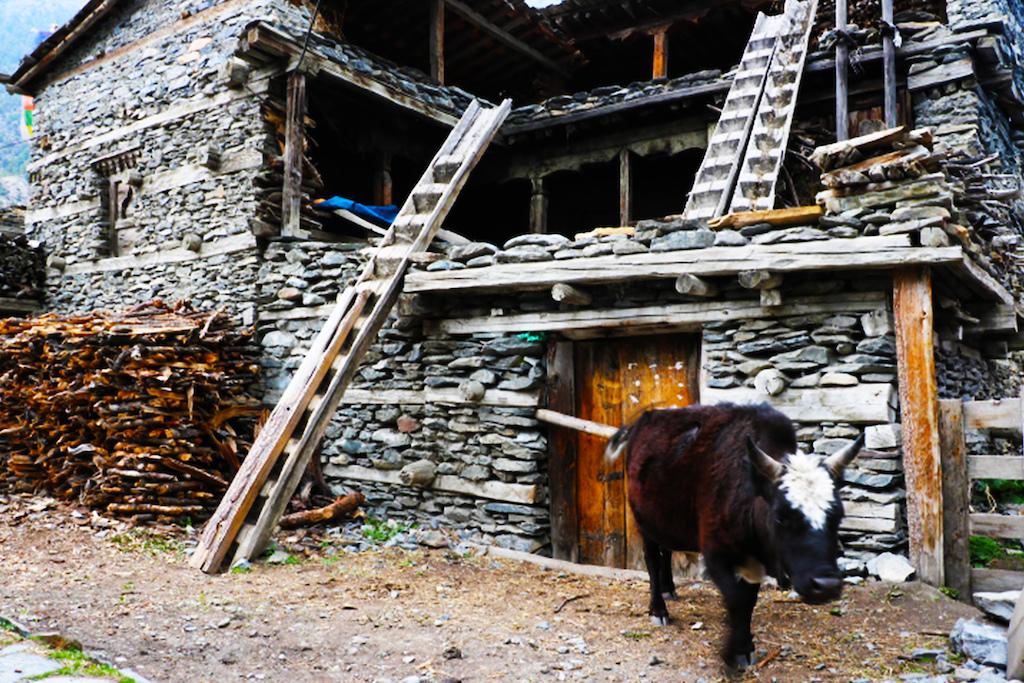 A quaint village of Pisang, Nepal