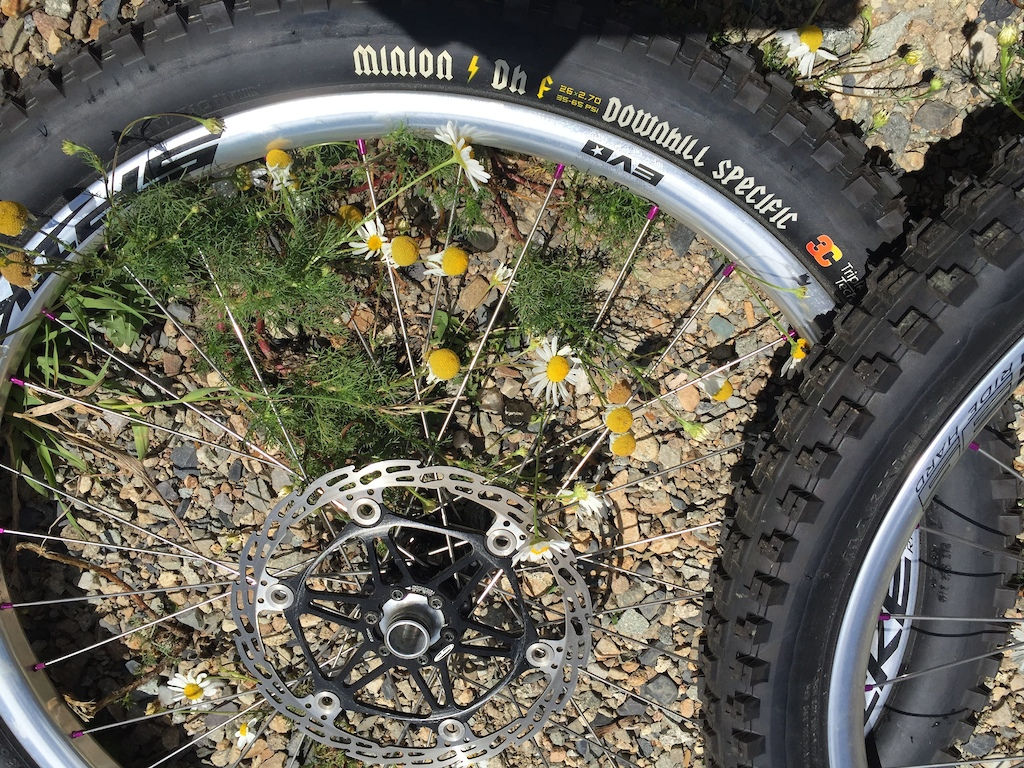 Bad asserry in wheels and wheelbuilidng.