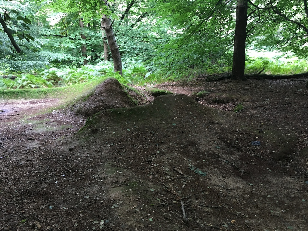old trails made new