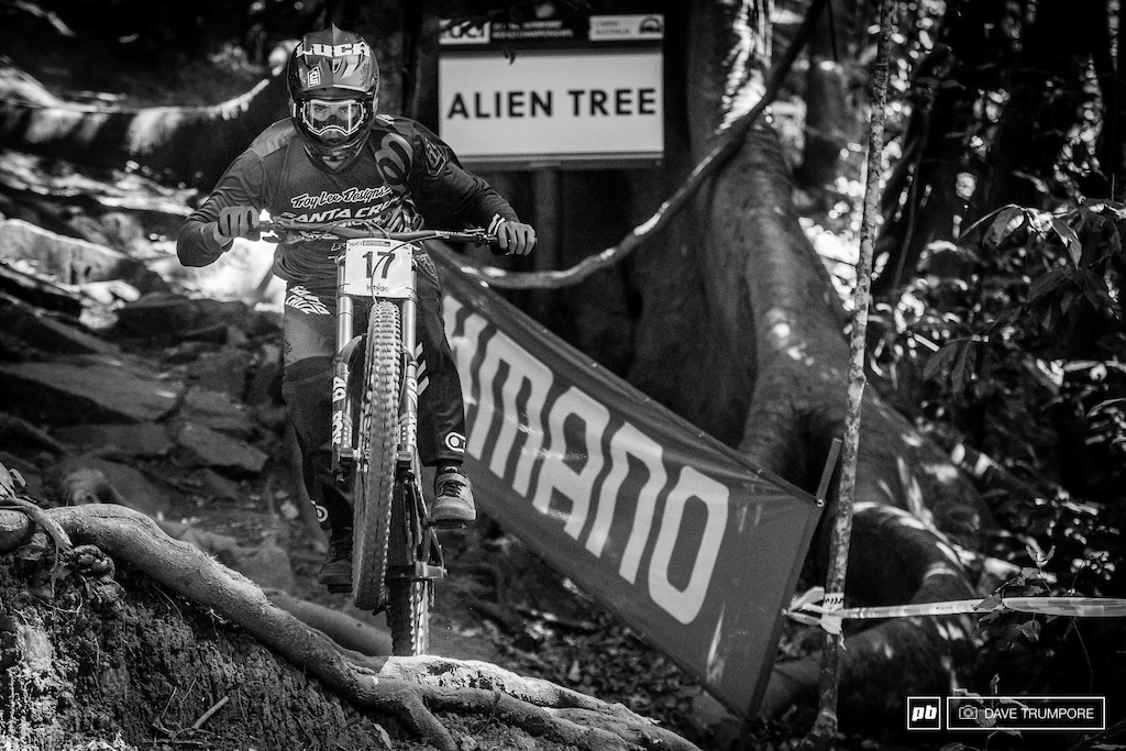 Walker Shaw doing his best to not get abducted by the Alien Tree.