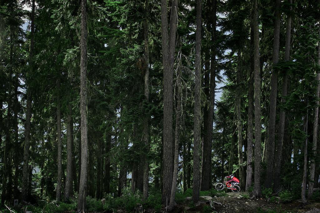William Robert Whistler Bike Park - My Own Mark