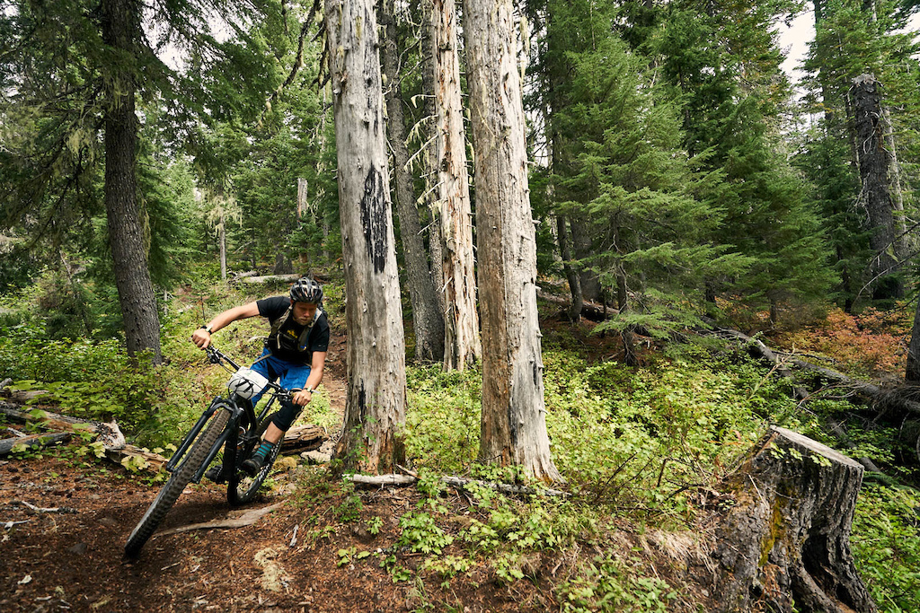 The Grasshopper Story Trans-Cascadia 2017 - Day Two