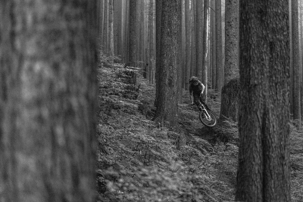Andrew Teit // Mount Seymour //North Vancouver, BC, Canada
