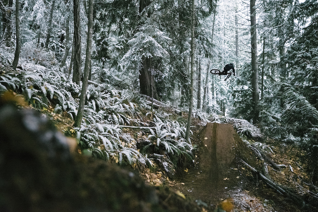 Dancing through a snowy pacific north west forest