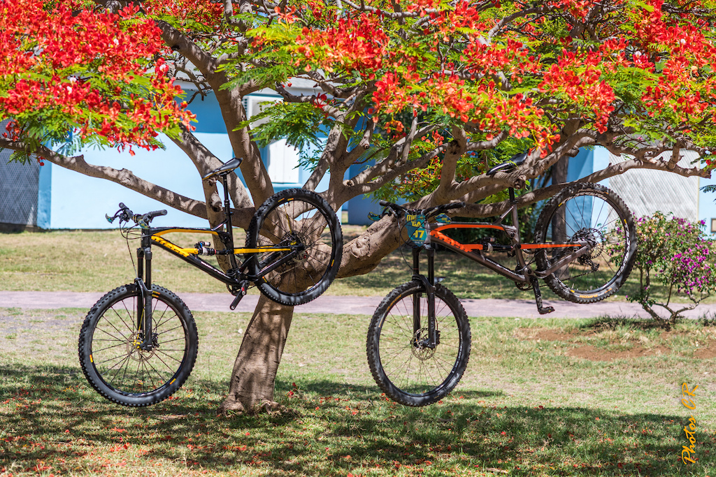 MEGAVALANCHE Reunion Island