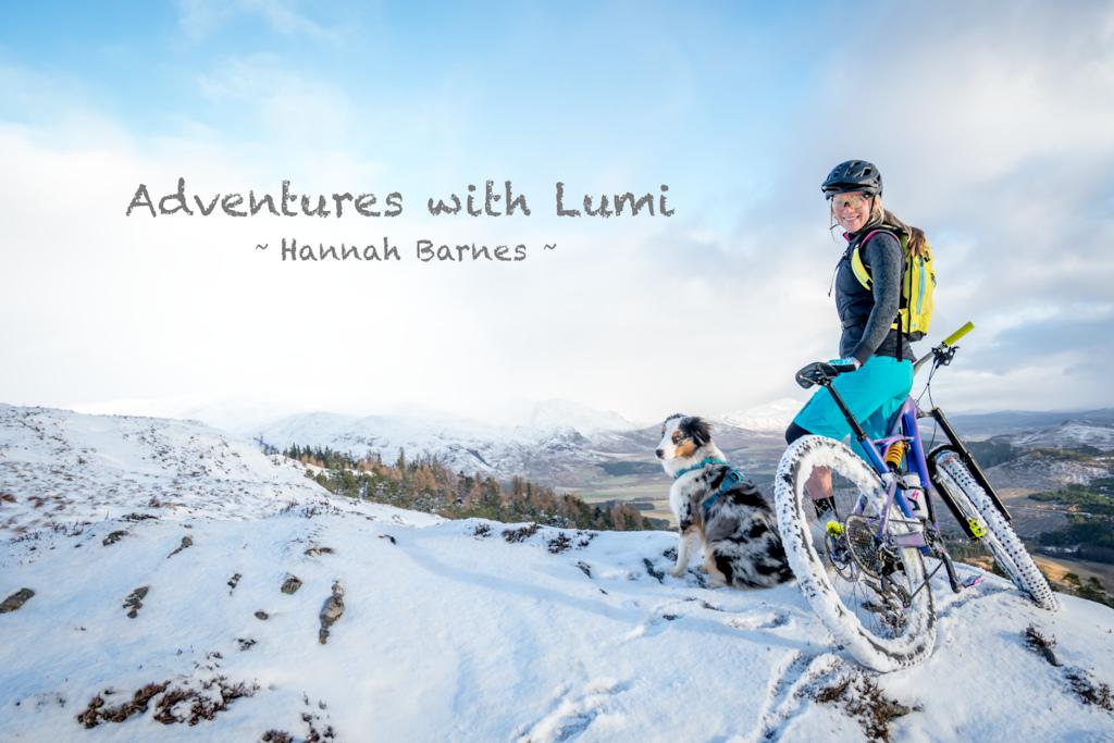 Adventures with Lumi