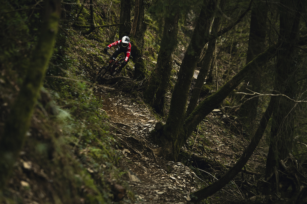Steep, loose and incredibly well crafted trail threads between the dark woodlands lower down the mountain side.