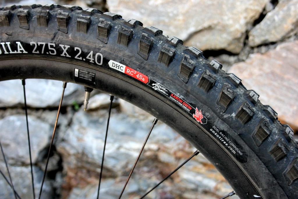 c3d24de6ae4 Onza Aquila Aaron Gwin Signature DH Tire - Review - Pinkbike