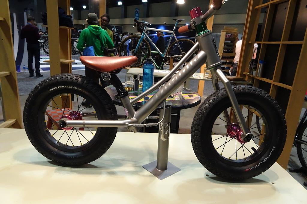 Mosaic Titanium strider bike