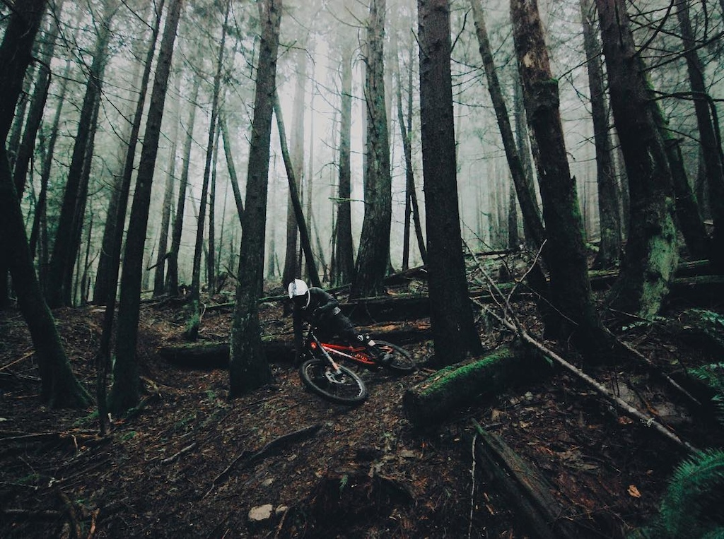 North Shore Vancouver Trails