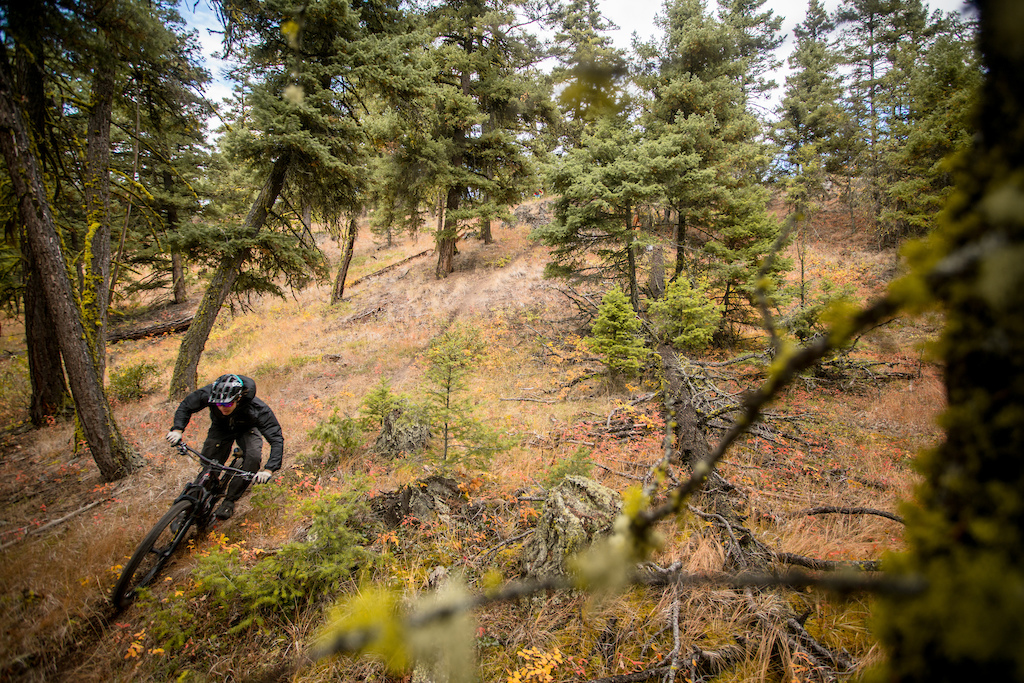 Finding some beautiful Kamloops singletrack