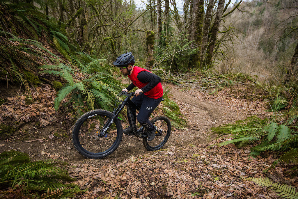 Zerode Taniwha review test. Photo by James Lissimore.