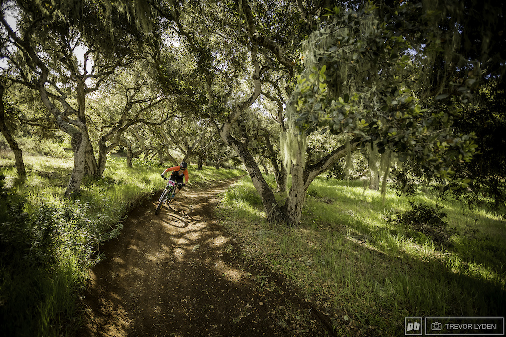 Stage 3 took riders such as Britt Phelan through a thick forest draped in lichen.