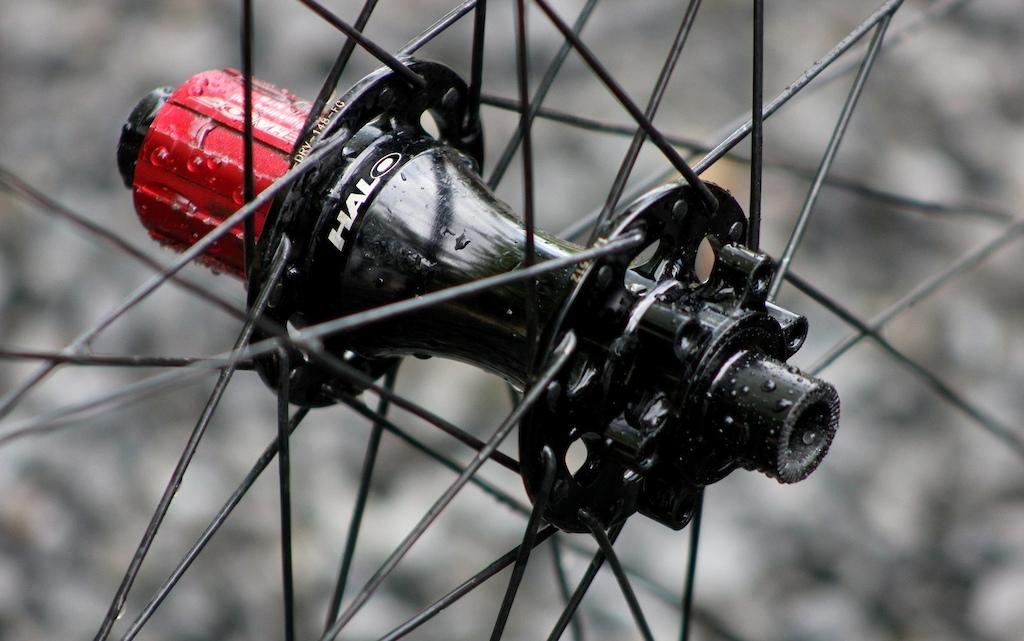 Halo Vortex Wheelset Review - Rear Hub