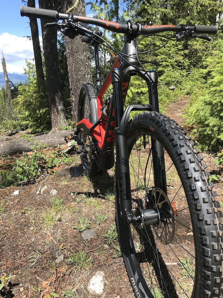 Marin Wolf Ridge before getting dirty