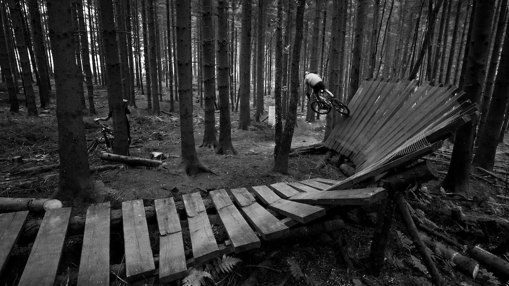 Flying trough the trees in Malmedy