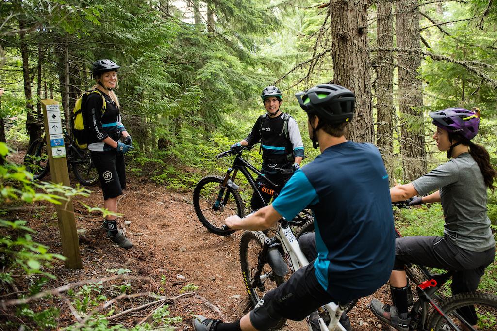Trail brief