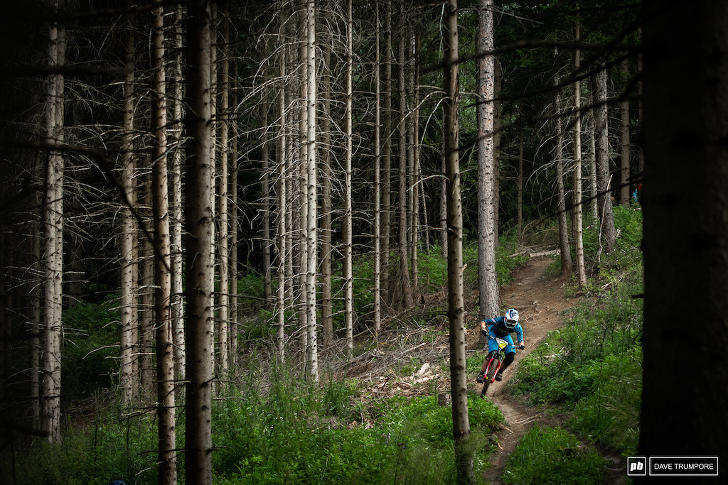 Ines Thoma traverses through the big trees near the bottom of Stage 6.