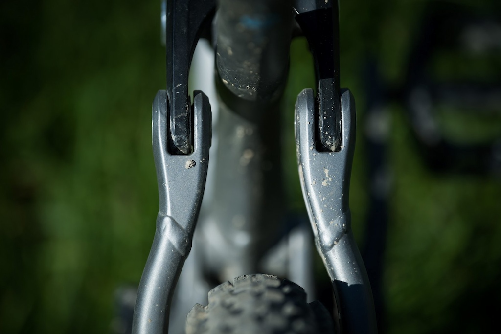 First Look Marin Alpine Trail - bridgeless seatstays