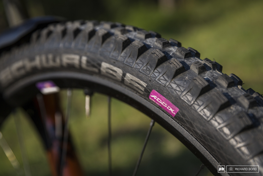 Apparently this pink mark saying ADDX is hard to find on a 29 Magic Mary and it s the softer rubber Schwalbe makes.