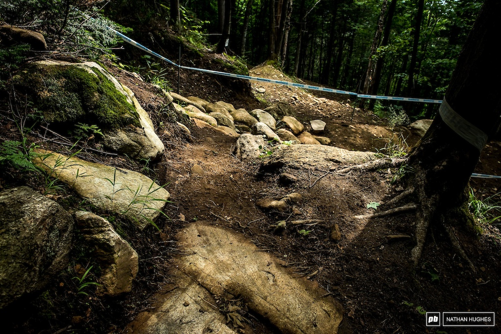 The upper woods are the usual mix of soft dirt and loosely planted boulders.