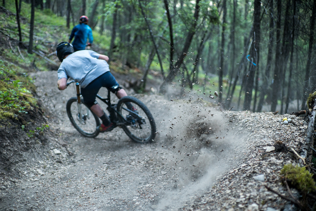 Fresh trail makes fresh roost