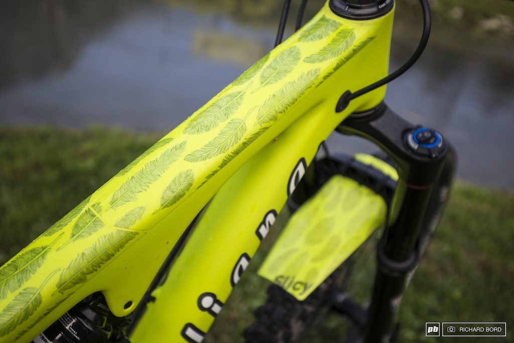 Personalized Slicy frame protection and mud guard for a total green yellow leaf look.