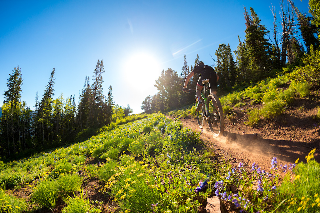 Brad Cole rides the Wasatch Crest Trail near Park City. If you look at a lot of my photos you ll see that a good many of them have the sun in them. I love shooting into the light and the way it makes things like plants and dust light up. This shot was used on the cover of the Kali Helmets catalog for 2014.