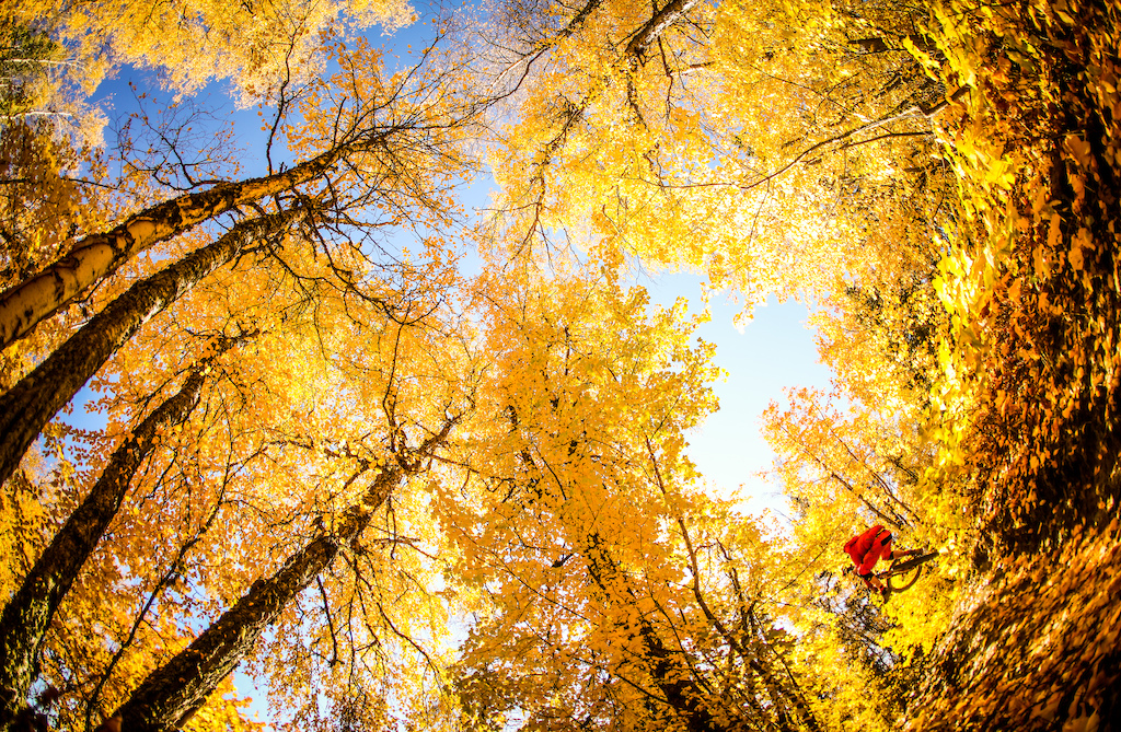 Fall in Smithers.