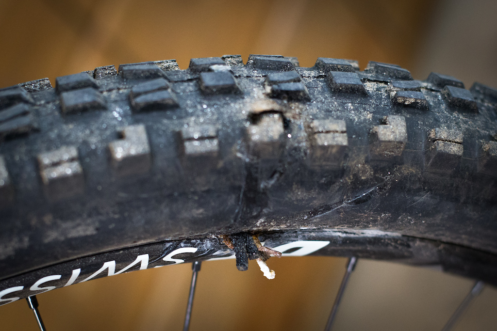 Pinkbike Poll How Often Do You Replace Your Tires Pinkbike
