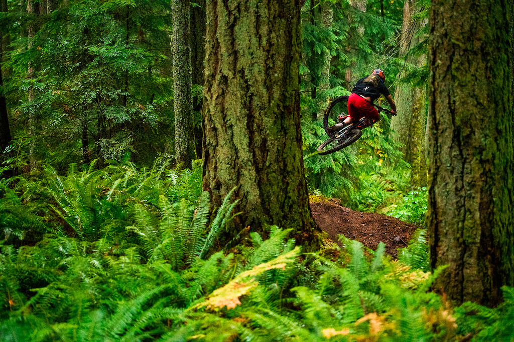 Kirt Voreis airing into the green abyss on his mountain bike at Galbraith Mountain near Bellingham Washington.