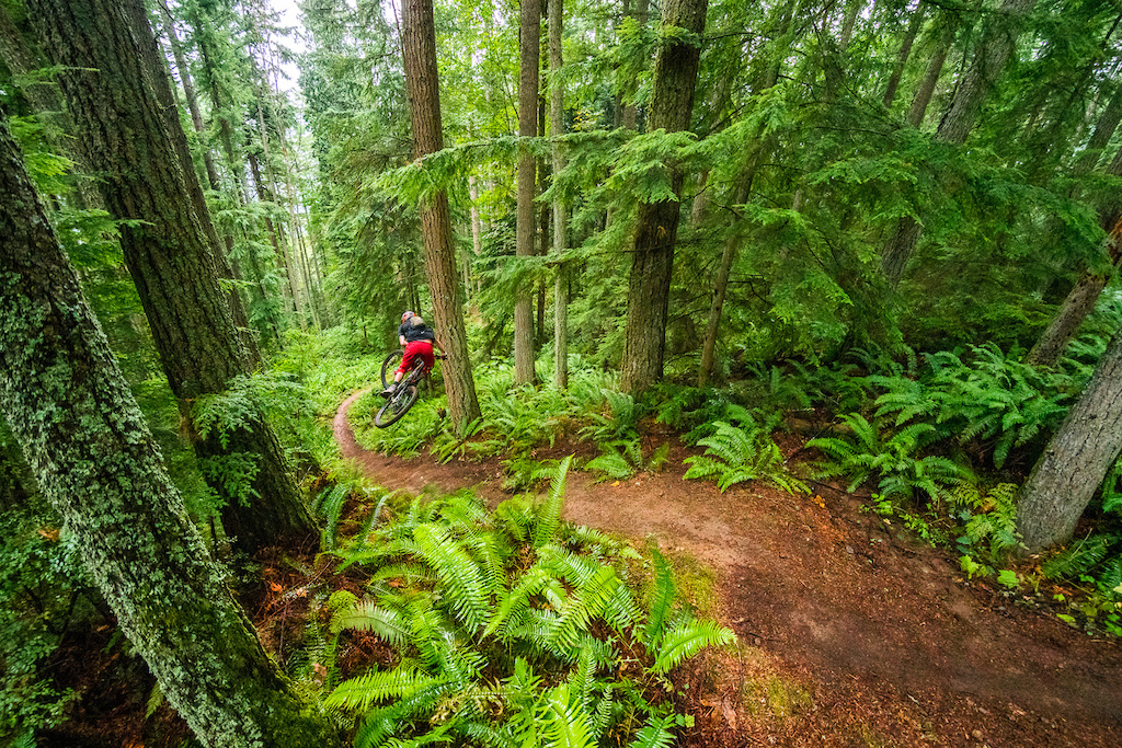 Kirt Voreis sinks it deep on his mountain bike at Galbraith Mountain near Bellingham Washington.