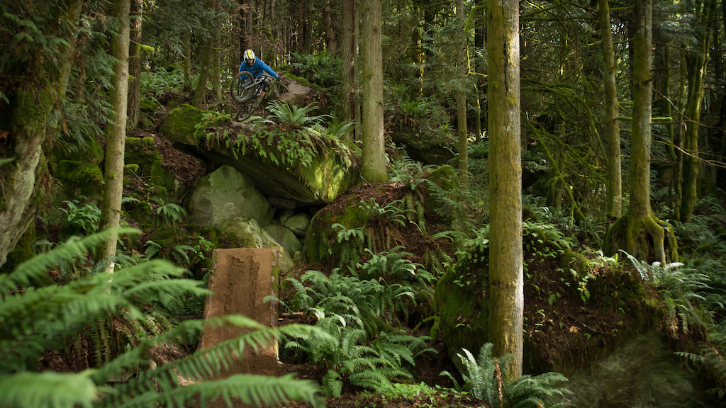 Self-shot photo in the lush fern forest of Bellingham. bike: Rocky Mountain Slayer