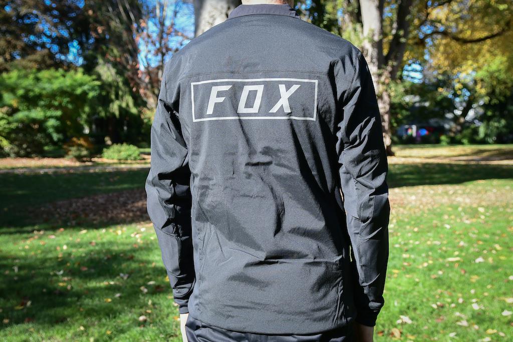 Fox Fall 2018