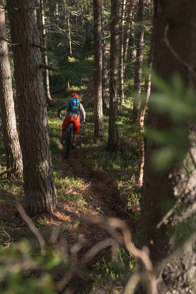 Nice & flowy upper section in a thick spruce forest. Loamy epicness!  Foto: Nac Zavrl