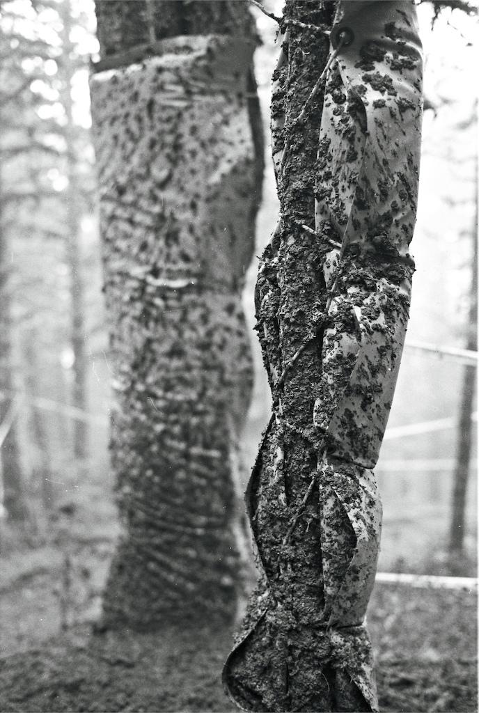 Tree padding