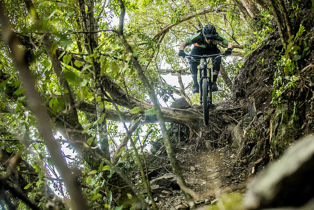 Nelson s hand built trails include plenty of interesting natural features. Photo Sven Martin