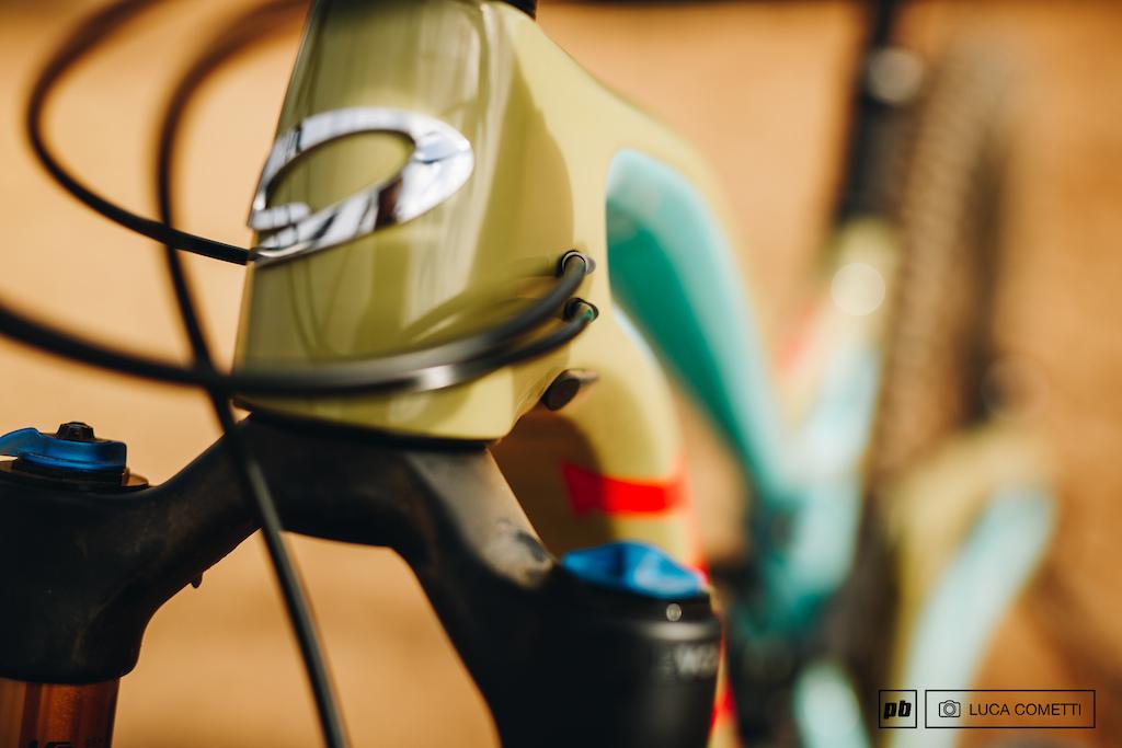Niner bikes photo shoot