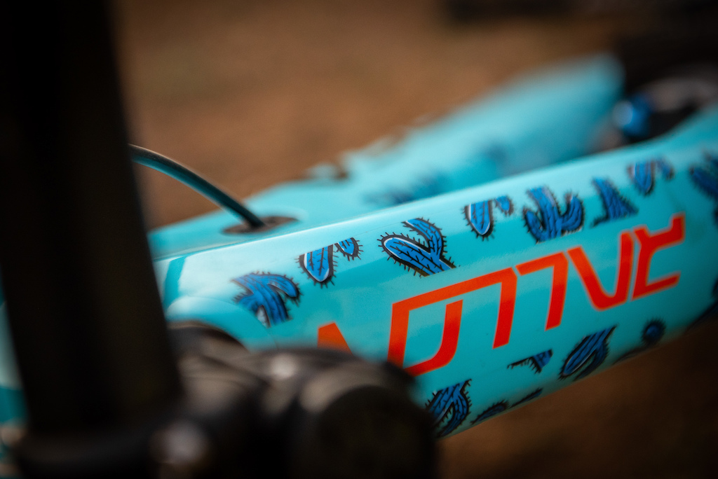 Custom top tube decals seem to be the new in thing this year.