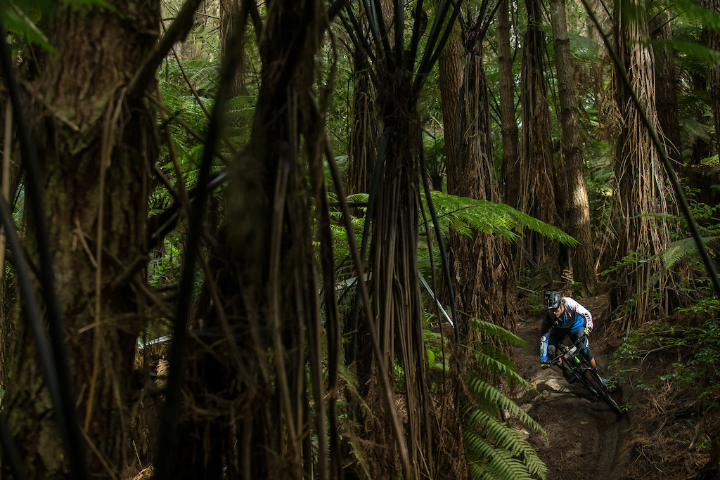 Canada s McKay Vezina makes his way out of the dark jungle and into the light during pratice for the Giant Toa Enduro. Credit Fraser Britton Crankworx