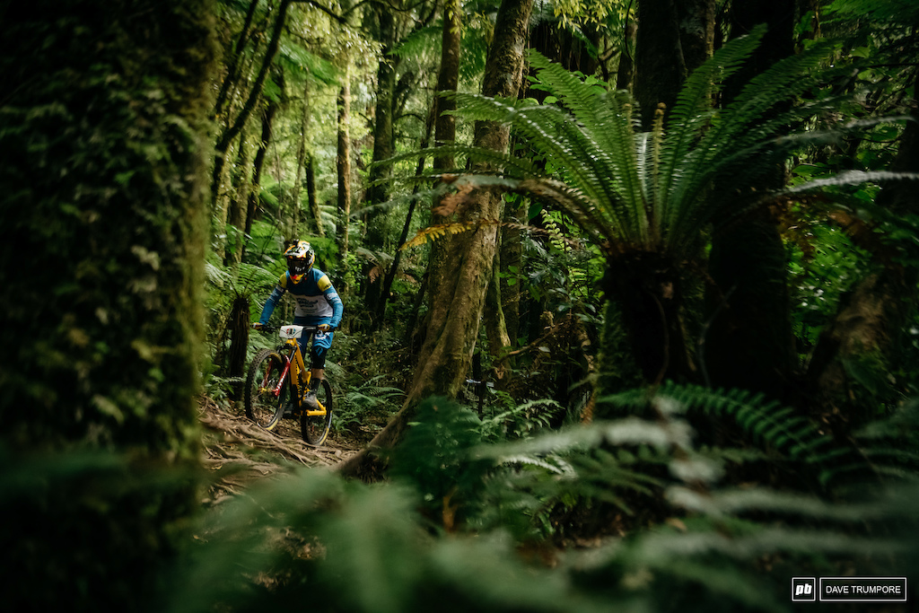 Sam Hill s bright kit is easy to spot even in the dark forest.