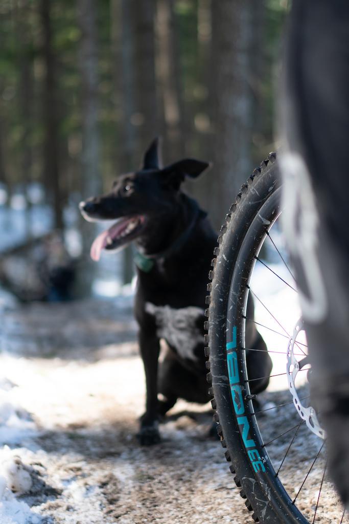 Photo NOBL Wheels Max McCulloch Visuals