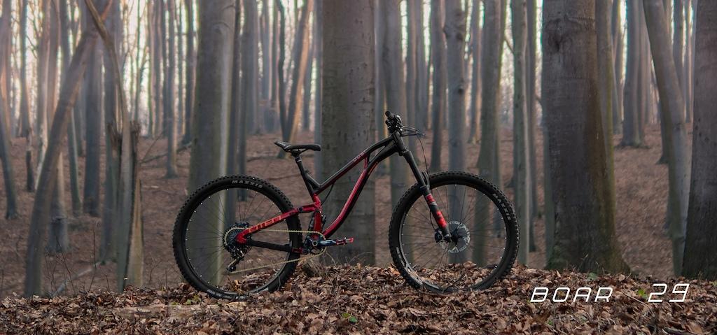 My new model OMEN BOAR 29 167mm rear travel. More info www.omenracing.com
