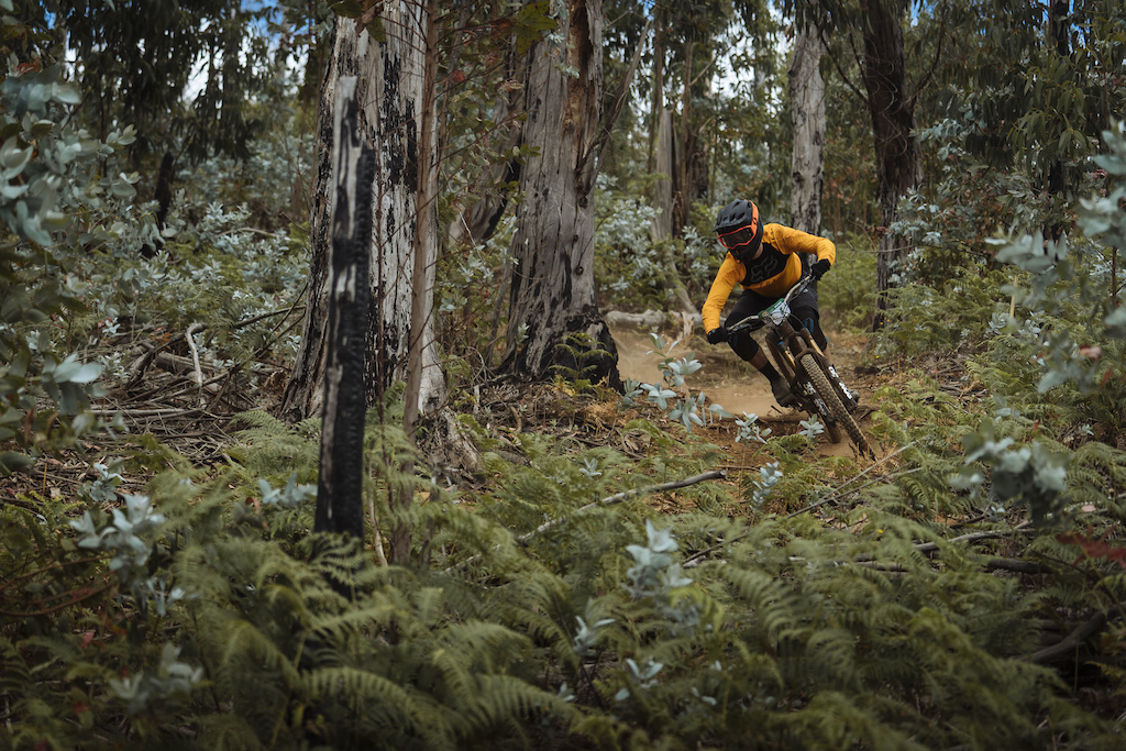 From high alpine to fast fun turns between the Eucalyptus trees.