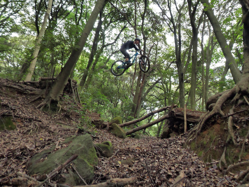 Jungle gap